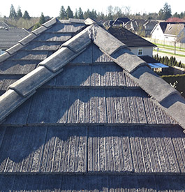 Roof Moss Removal Building Cleaning Vancouver Surrey Bc
