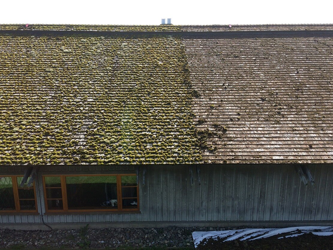 Before Hand Removal of Cedar Roof Moss