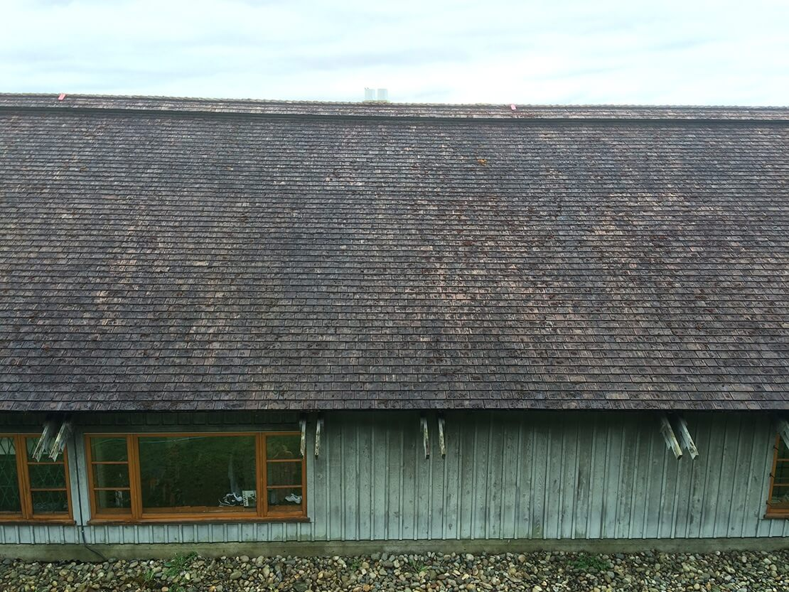 After Hand Removal of Cedar Roof Moss