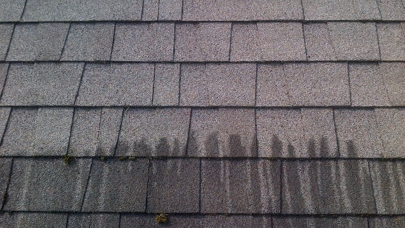 Asphalt Roof Cleaning Amp Maintanance Rotban Vancouver
