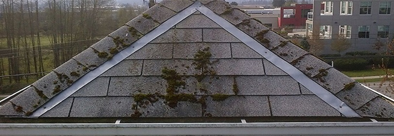 Zinc Strip Moss Control On Roofs Don T Zinc Strip Rotban