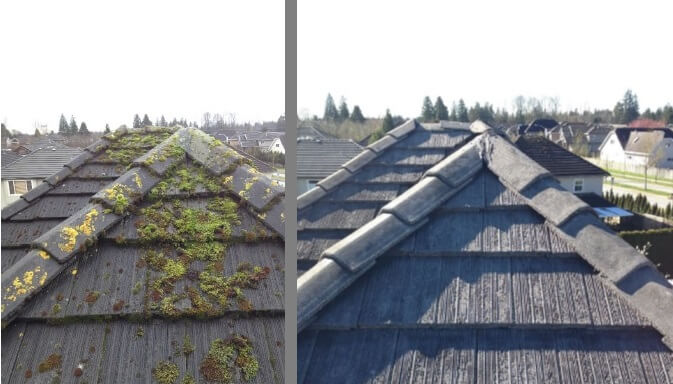 Dark Stains on your Roof – Innocent Villain
