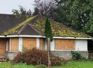 A boarded-up house with a roof covered in moss.